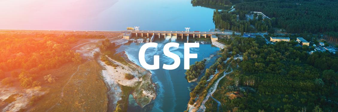 GSF sancionada pelo governo