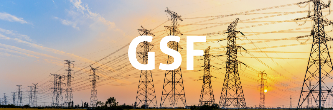 CCEE afirma que espera solução do GSF em junho